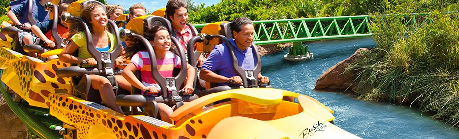 cat florida busch
