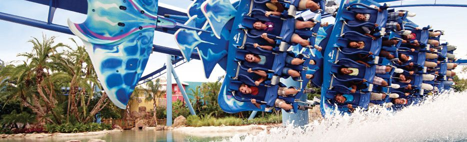 cat florida SeaWorld Parks